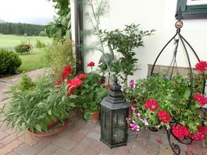 Landhaus Klinkan, Apartmány  Ramsau am Dachstein - big - 74