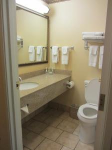 Kamer met 2 Queensize Bedden - Rookvrij