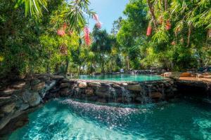 Thala Beach Nature Reserve, Port Douglas (29 of 81)