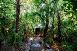 Thala Beach Nature Reserve, Port Douglas (40 of 81)