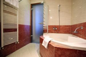Elizabeth Hotel, Hotels  Gyula - big - 35
