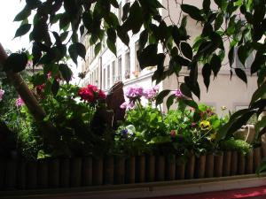 Chambres Les Soyeuses, Bed & Breakfast  Lione - big - 15