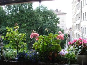 Chambres Les Soyeuses, Bed & Breakfast  Lione - big - 17