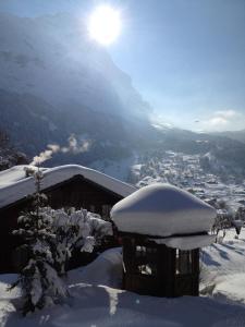 Hotel Caprice - Grindelwald, Hotely  Grindelwald - big - 92