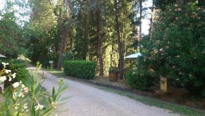 Agriturismo Bellavista, Aparthotels  Incisa in Valdarno - big - 64