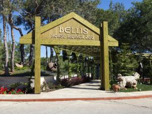 Bellis Deluxe Hotel, Hotely  Belek - big - 64