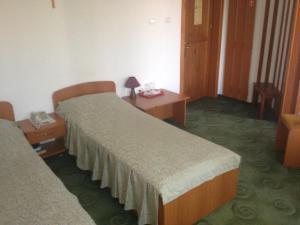 Hotel Lotus, Hotels  Arad - big - 6