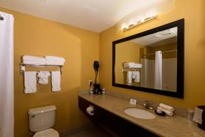 Comfort Inn Plant City - Lakeland, Отели  Plant City - big - 7