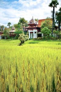 Dhara Dhevi Chiang Mai (17 of 39)
