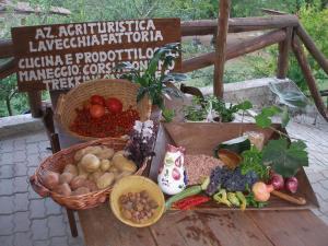 Az.Agr.La Vecchia Fattoria da Marica, Farmházak  Coreglia Antelminelli - big - 18