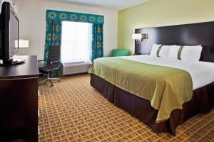 Holiday Inn - Sarasota Bradenton Airport, Отели  Сарасота - big - 12
