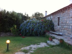 Il Vecchio Ginepro, Bed and Breakfasts  Arzachena - big - 45