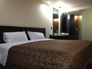 Отель Hotel Amazonas, Мехико