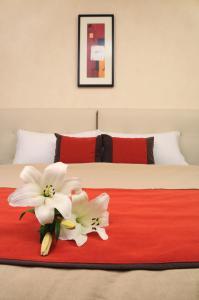 Regente Palace Hotel, Отели  Буэнос-Айрес - big - 12
