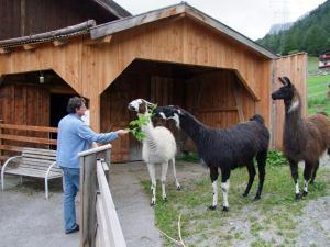 Hotel-Gasthof Freisleben, Hotely  Sankt Anton am Arlberg - big - 40