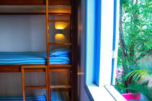 Single Bed in Mixed 6-Bed Dormitory Room