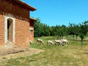 La Casa Grande de Quintanas de Gormaz, Affittacamere  Quintanas de Gormaz - big - 27