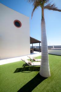 Villas La Galea, Виллы  Эль-Медано - big - 24