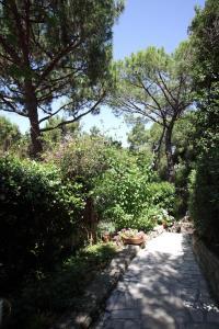 Residence Casa Di Caccia, Apartmanhotelek  Marina di Bibbona - big - 17