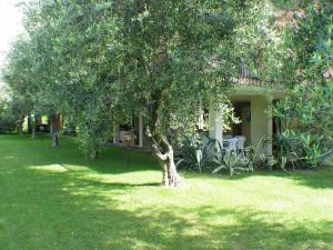 Sport and Relax Hotel Holiday, Hotels  Nago-Torbole - big - 4