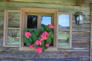Haus Alexander, Guest houses  Schladming - big - 62