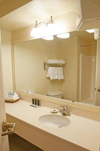 Cherry Tree Inn and Suites, Отели  Traverse City - big - 3