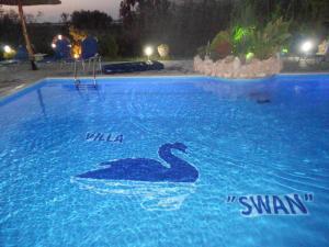 Villa Swan, Apartments  Lefkada Town - big - 53