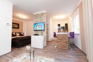 Traditional Apartments Vienna TAV - Design, Apartmanok  Bécs - big - 15