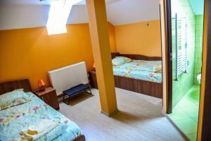 Pensiunea Andrei, Guest houses  Copăcelu - big - 1