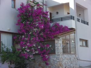 Iris Rooms and Apartments, Apartmány  Kountoura Selino - big - 22