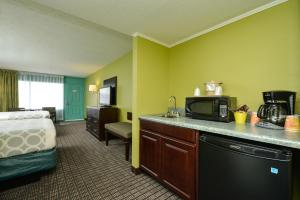King Room - Pet Friendly