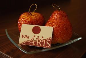 Vila Aris, B&B (nocľahy s raňajkami)  Iaşi - big - 29