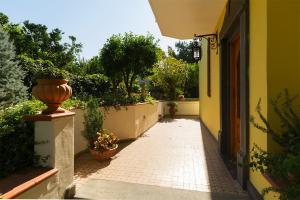 B&B Massico Apartments, Bed and breakfasts  Sant'Agnello - big - 12