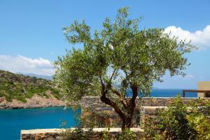 Daios Cove Luxury Resort & Villas (5 of 71)