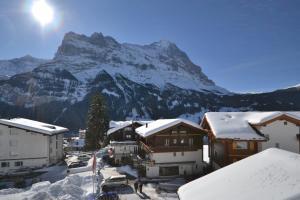 Hotel Caprice - Grindelwald, Hotely  Grindelwald - big - 74