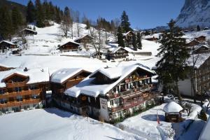 Hotel Caprice - Grindelwald, Hotely  Grindelwald - big - 76