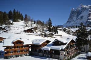 Hotel Caprice - Grindelwald, Hotely  Grindelwald - big - 78