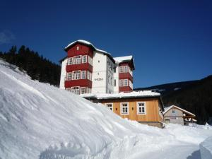 Snezka Residence, Apartmány  Pec pod Sněžkou - big - 1