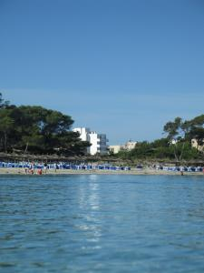 Apartaments Andreas, Apartments  Colonia Sant Jordi - big - 19