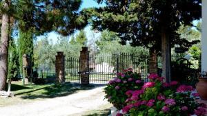 Agriturismo Podere Sottogello, Farmházak  San Giovanni a Corazzano  - big - 27