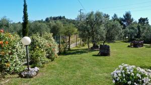 Agriturismo Podere Sottogello, Farmházak  San Giovanni a Corazzano  - big - 30