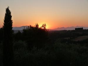 Agriturismo Podere Sottogello, Agriturismi  San Giovanni a Corazzano  - big - 42