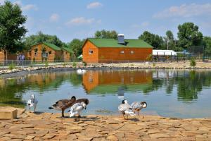 Slavutich, Holiday parks  Nova Kakhovka - big - 38