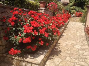 B&B Al Giardino, Bed & Breakfasts  Monreale - big - 39