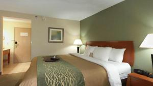 Special Offer AAA Rate - King Room
