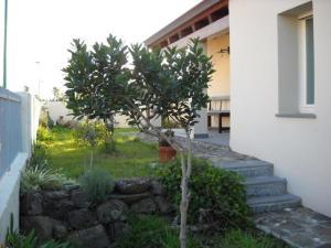 La Balia, Отели типа «постель и завтрак»  Marrùbiu - big - 42