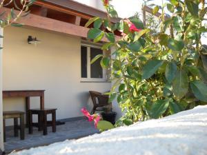 La Balia, Bed & Breakfasts  Marrùbiu - big - 39