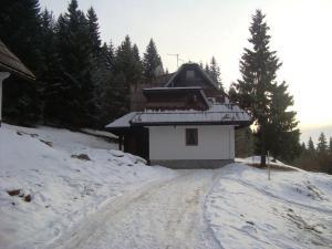 Studios Šumska Kuća 2 & 3, Apartments  Kopaonik - big - 27
