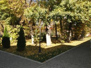 Отель Адмирал, Отели  Одесса - big - 43