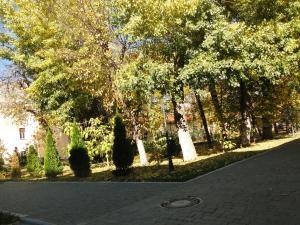 Отель Адмирал, Отели  Одесса - big - 63